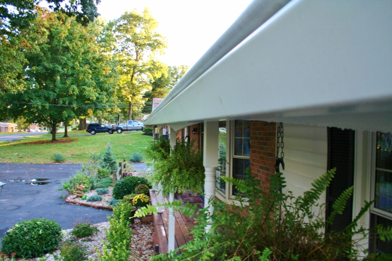 How To Clean Moldy Gutters And Bricks Rappsody In Rooms