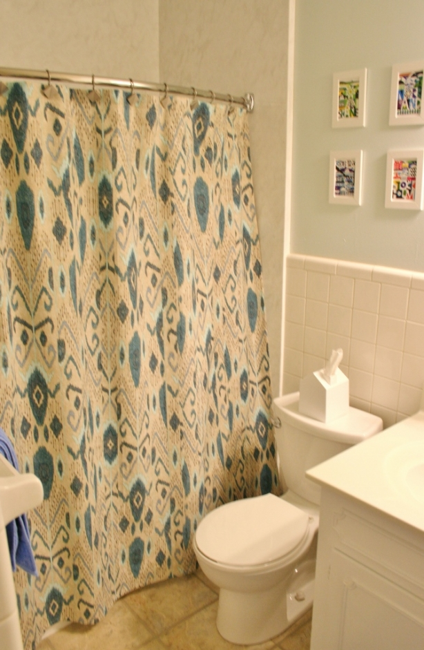 Shower Curtains: Ikat or Colorful Modern - Rhapsody in Rooms